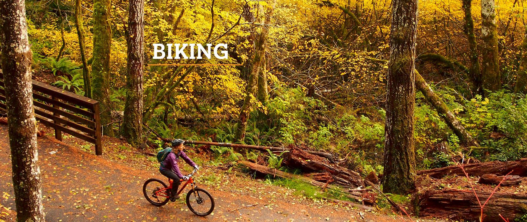 Biking on the Olympic Discovery Trail in Port Angeles