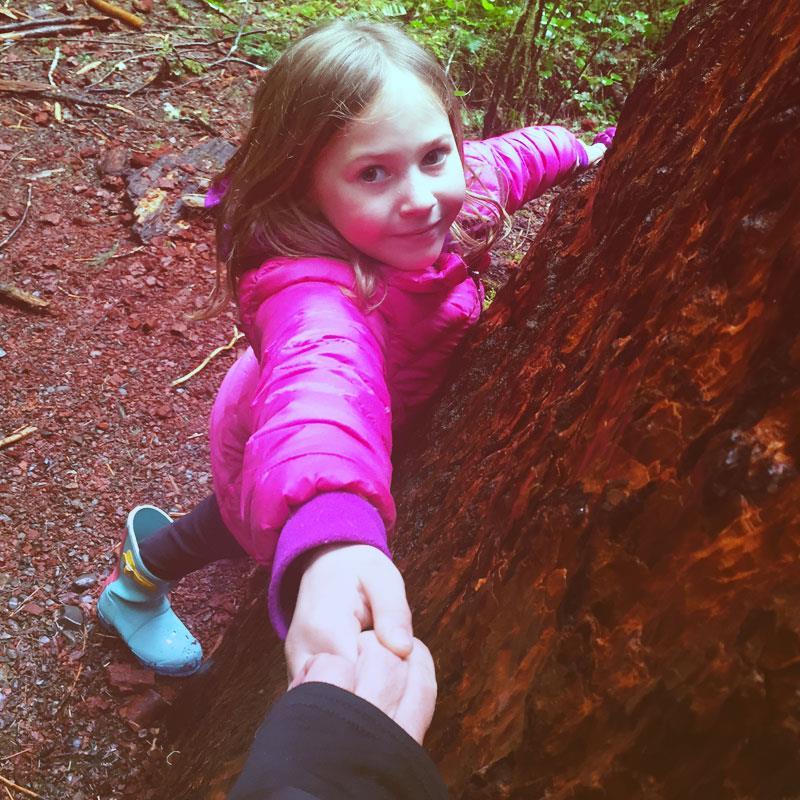 tree-hugging-port-angeles