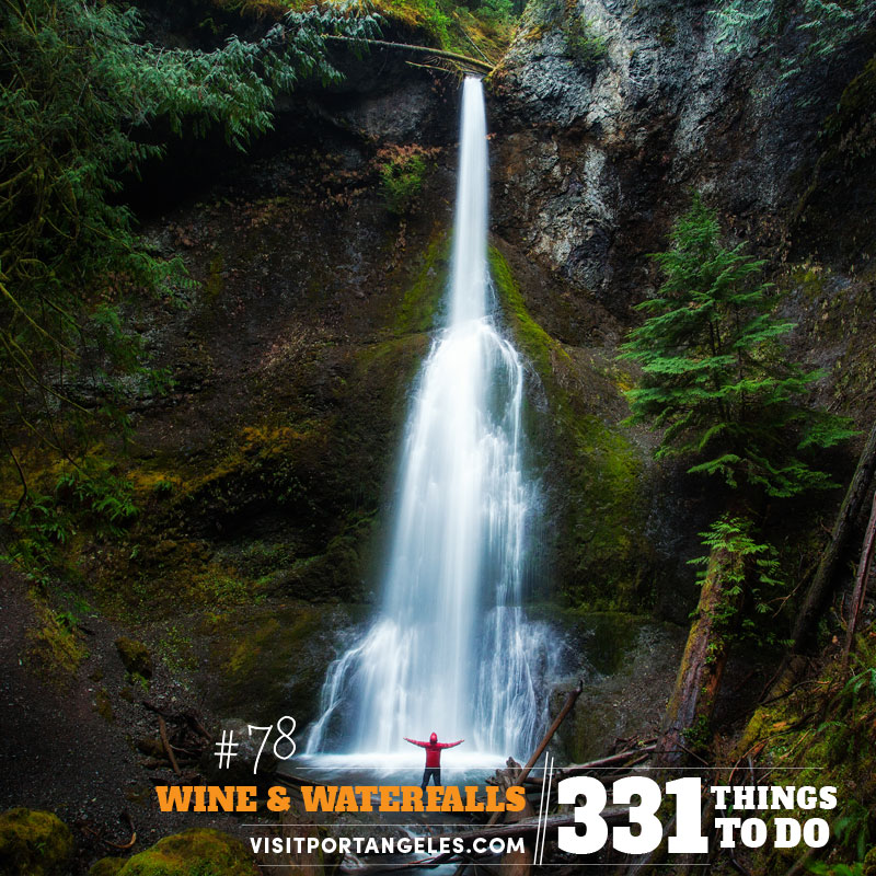 Hike to Marymere Falls on the Olympic Peninsula